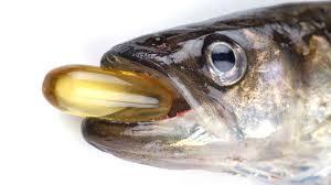 fish oiljpg